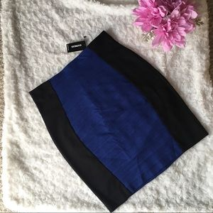 Express Skirt NWT Size 2